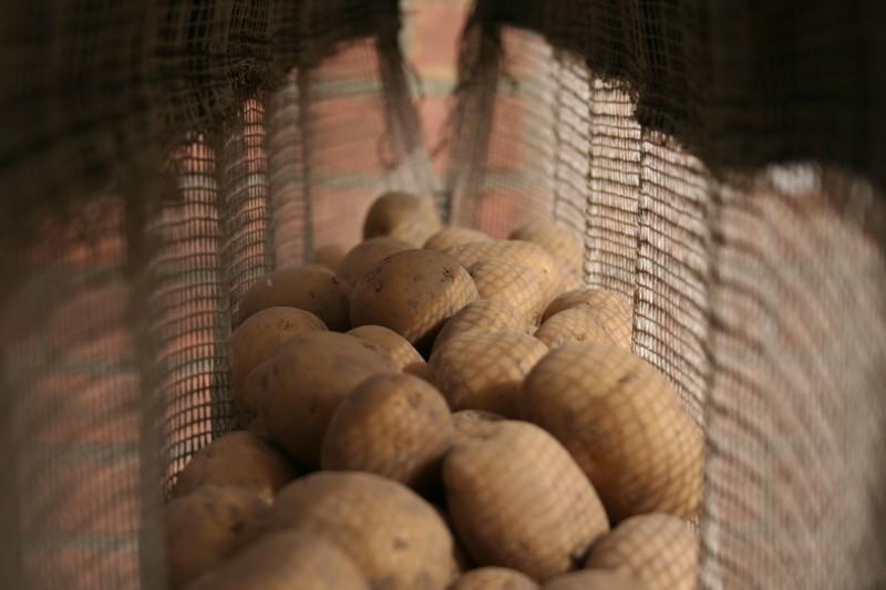 poot aardappel
